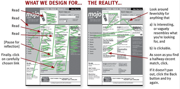 what-are-the-most-important-principles-of-web-design-6